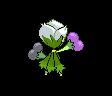 Roserade ♀