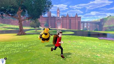 Naturzonne-Starke Pokémon