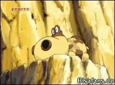 Screenshot von Hippopotas