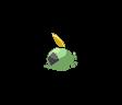 Schluppuck ♀