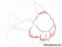 Zeichenkurs Evoli - Schritt 5