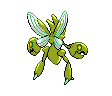 Scherox ♀
