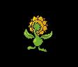 Sonnflora
