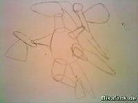 Zeichenkurs Reptain - Schritt 3