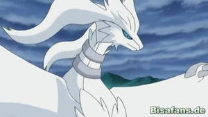 Screenshot von Reshiram