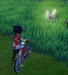 Pokémon mit Aura
