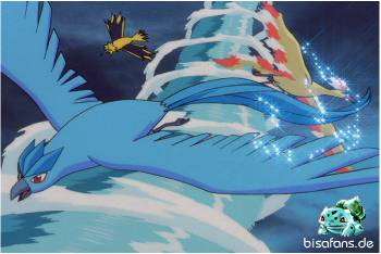 Die legendären Vögel bekämpfen sich...