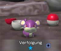 Pokémon 1 Stern
