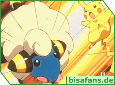 Pikachu vs. Fluffi