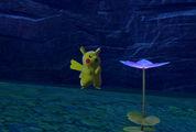 Beispielfoto für Pikachu