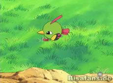 Screenshot von Natu