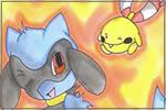 D/P  Pokémon