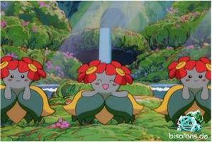 Screenshot von Blubella