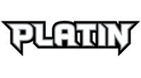 Platin-Basis-Set