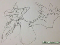 Zeichenkurs Mega-Aerodactyl - Schritt 3