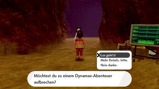 Dynamax-Abenteuer