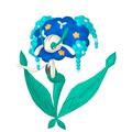 Florges Blaublütler