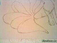 Zeichenkurs Vulnona - Schritt 6