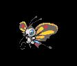 Papinella ♀