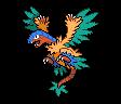 Aeropteryx