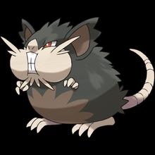 Alola-Rattikarl