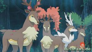 Screenshot von Kronjuwild