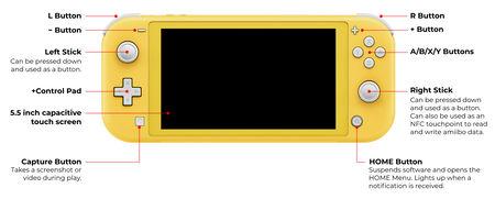 switch-lite-5.jpg